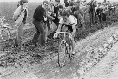 Hinault wins the ;race for dickheads'